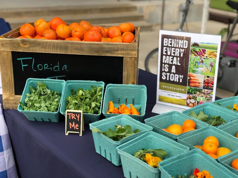 Behind every meal is a story about where it came from. Fresh produce is displayed for students to taste test, each with their own story about how they were grown.