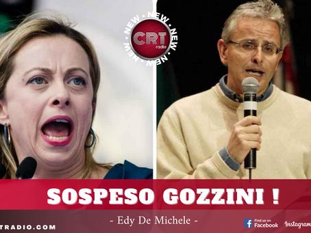 """Gozzini sospeso dopo gli insulti """"social"""" alla Meloni"""