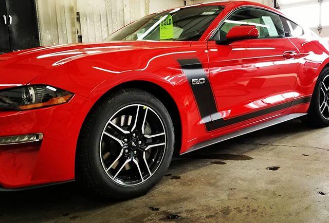 2019 Mustang 5