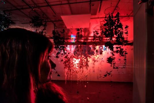 MyLoveisBulletproof_gallery3.jpg