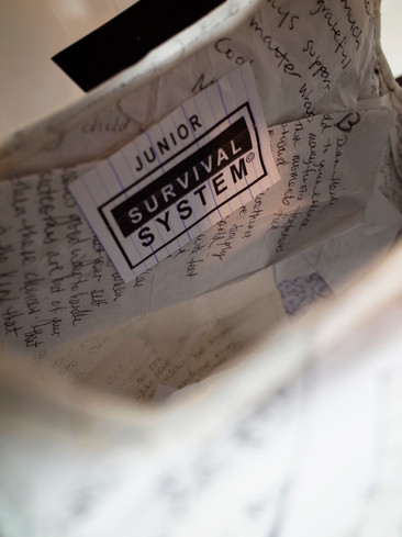 SurvivalSystem.jpg