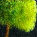 Acrylique, 60 x 60 cm N/A