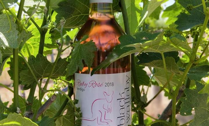 2018 Ruby Rosé (6 or 12 bottles)