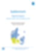 Regionsrapport_2018_med_opfølgning_2019_
