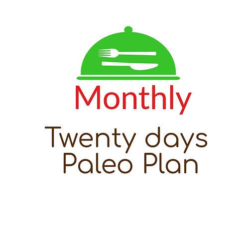 TWENTY DAYS PALEO PLAN, BREAKFAST,  LUNCH AND DINNER