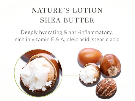 Why Shea Butter is a Super Butter