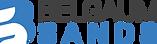 Belgaum Sands Logo