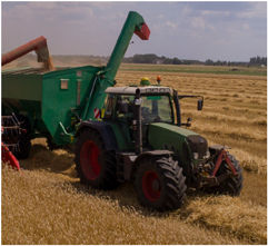AKP_Home_Agriculture.jpg