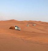 Desert Safari Image_edited.jpg