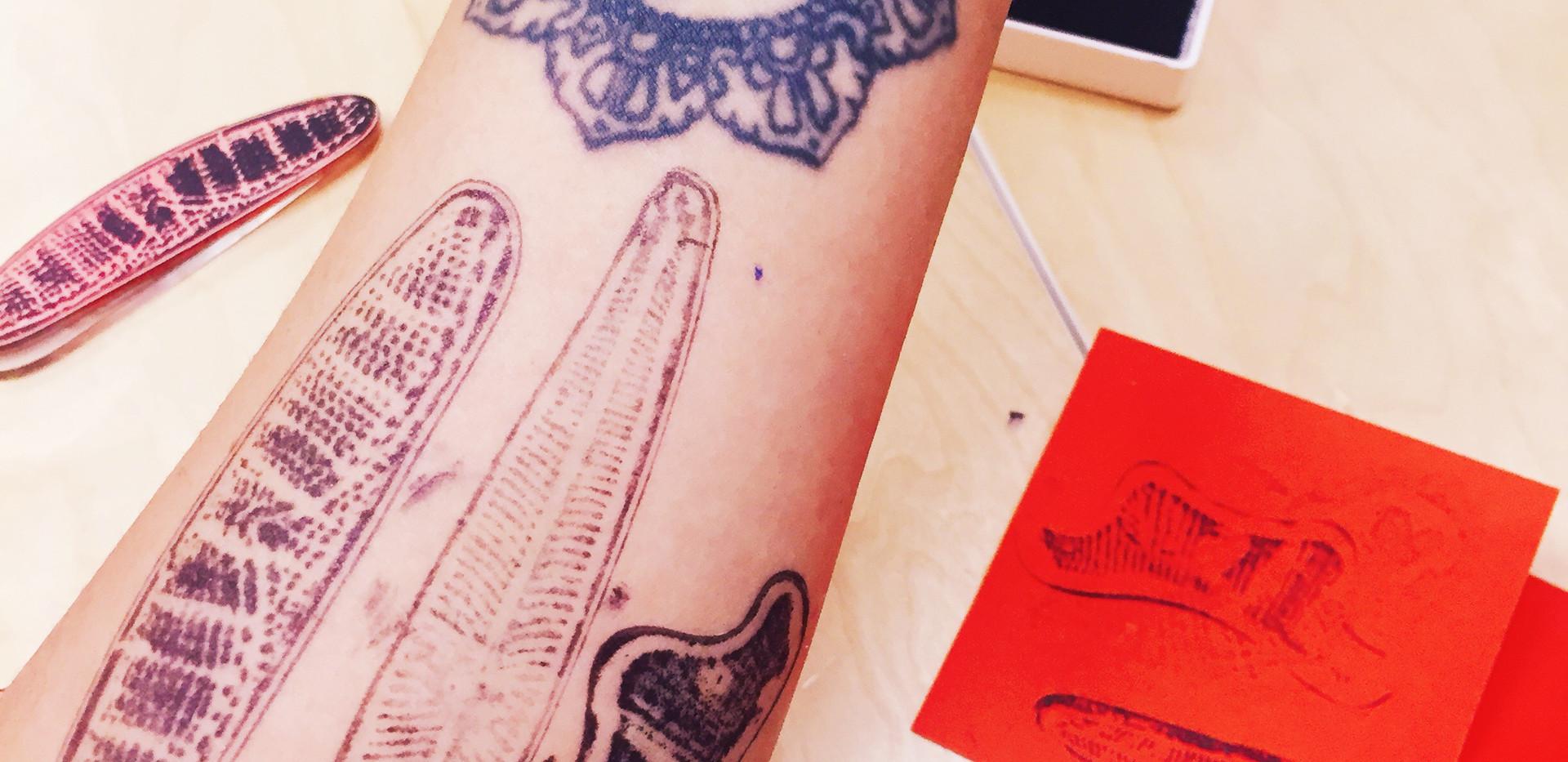 Diatom Tattoos