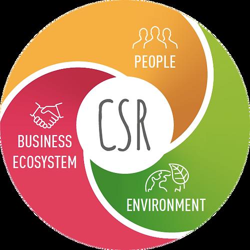 CSR nice one.png