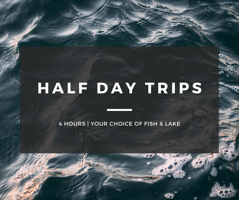 Half Day Guided Fishing Trip