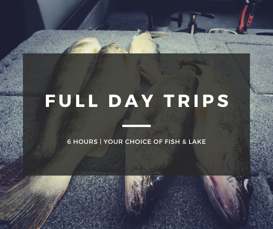 Full Day Guided Trip