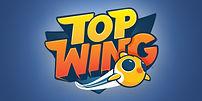 top-wing-wholesale.jpg