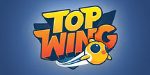 top-wing-wholesale.jpg