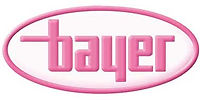 bayer-prams-wholesale.jpg