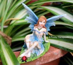 Fantasy & Fairies