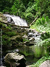 Peaceful rain forest waterfall for meditation