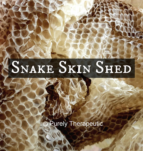 ethically sourced snake skin shed for wicca spells