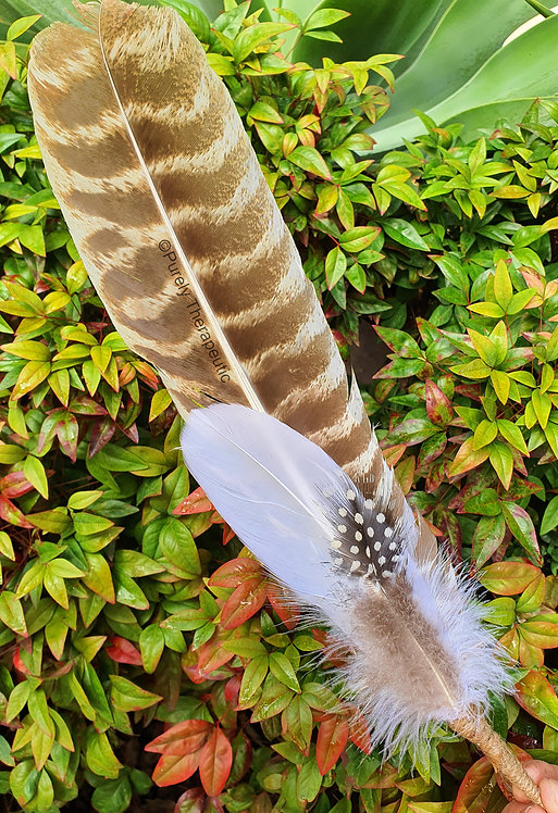 Smudging Feather with Clear Quartz (A)