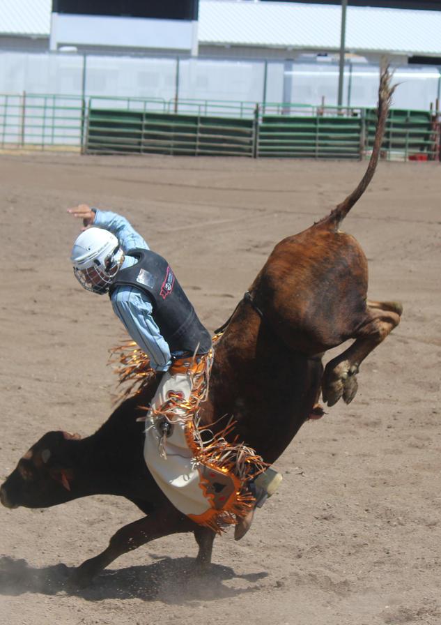 rodeo-afton-wyoming.JPG