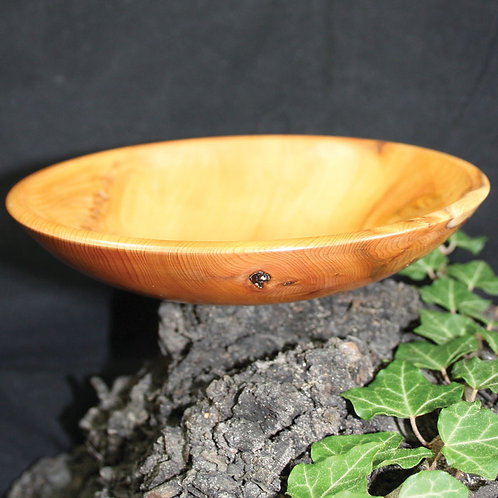 Yew and Gold Vessel