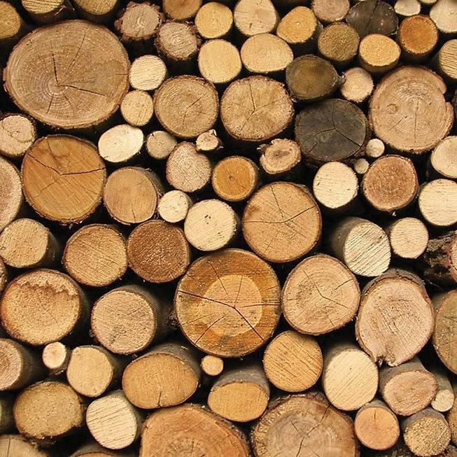 logs-of-wood.jpg