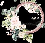 OEG Main Logo (No White Background).png