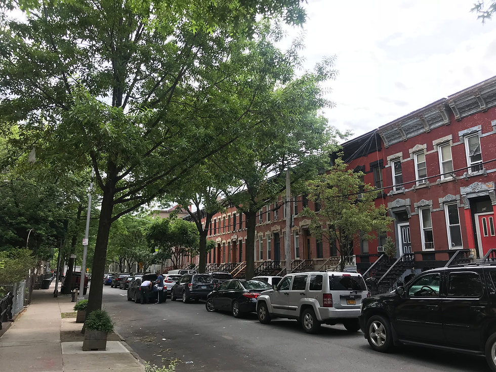 Row of apartment buildings in the Bronx
