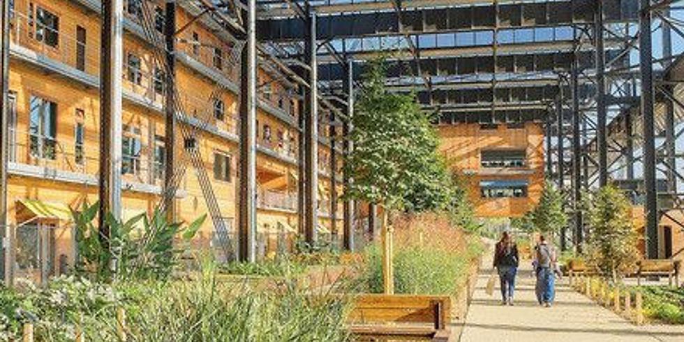 Initiation à l'architecture écologique