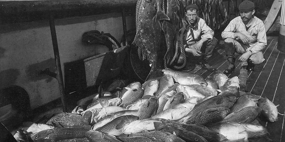La fascinante histoire de la pêche à la morue