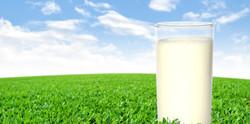 A Glass of Milk in a Field