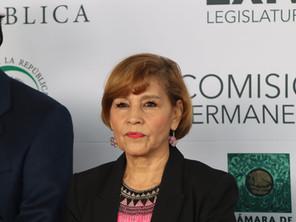 SENADORA BLANCA PIÑA EN DESACUERDO CON EL T-MEC. RESPALDADO POR AMLO.