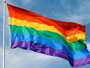 EL TEEM, APROBÓ SENTENCIA DEL JUCIO PARA PROTECCIÓN DE DERECHOS POLÍTICOS DE LA COMUNIDAD LGTBTTIQ+