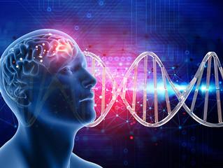 Epigenética y conducta