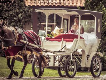 Casamento Daniella & Alex
