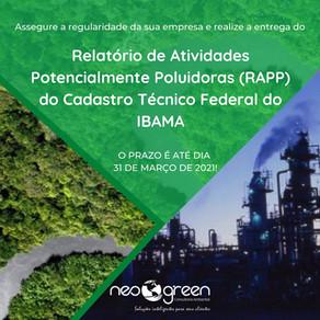 Relatório de Atividades Potencialmente Poluidoras e Utilizadoras de Recursos Ambientais (RAPP)