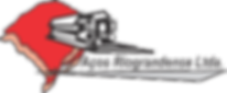 logo_Aços_Riograndense_1.png