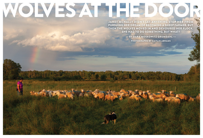October Editorial Feature Story: Wolves at the Door