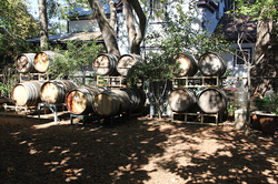 Rediscovering The Soul Of Napa