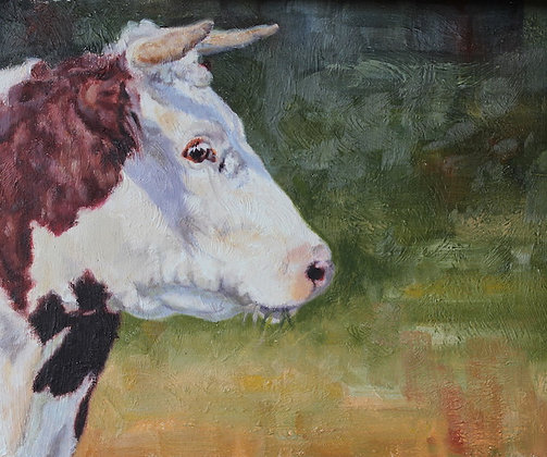 Happy Hereford- SOLD