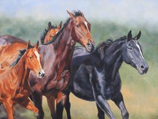 COLOUR MIXING - HORSES