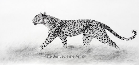 """Leopard on the Move""-"