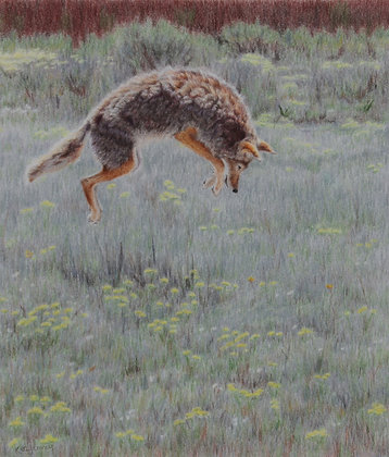 'Leaping for Lunch'