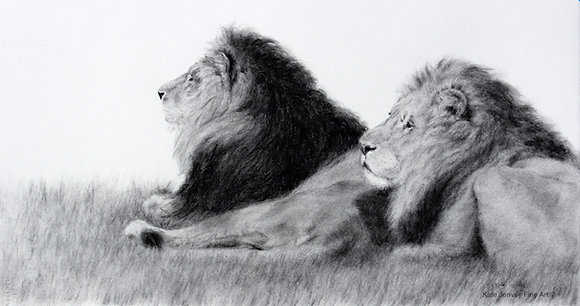 Strength of the Pride-avail. Myrtleford Gallery