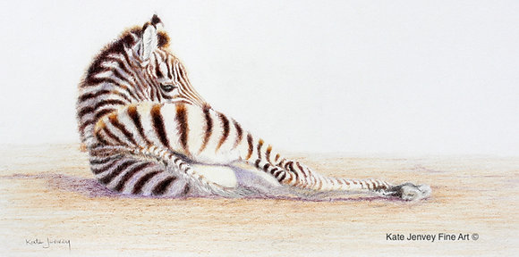 'Relaxed Stripes'