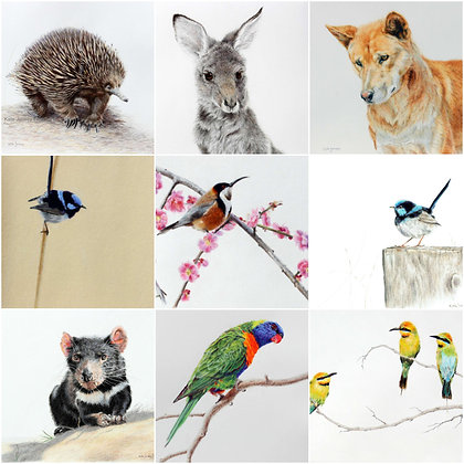 Greeting Cards-Australian wildlife