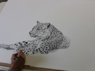Leopard-work in progress