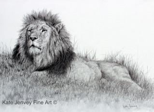 Sketch for Survival