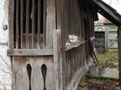 Kászonaltíz műemlék ház (133).JPG